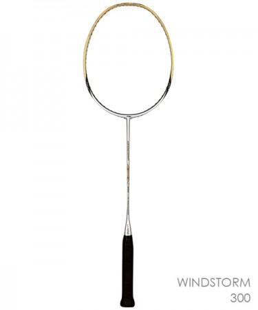 WINGSTORM300